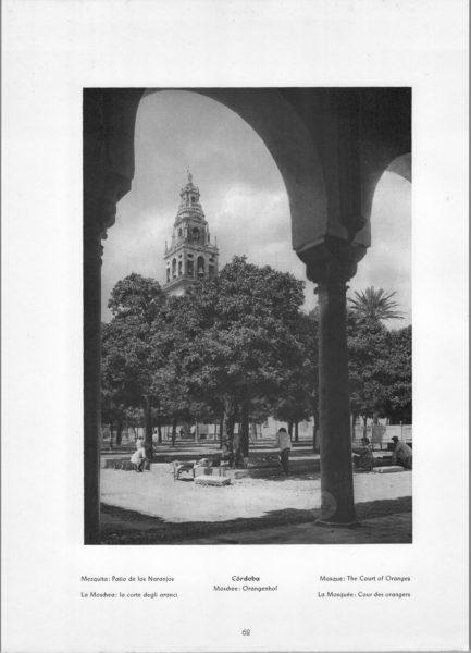 Photo 062: Córdoba Mosque – Mosque: The Court of Oranges