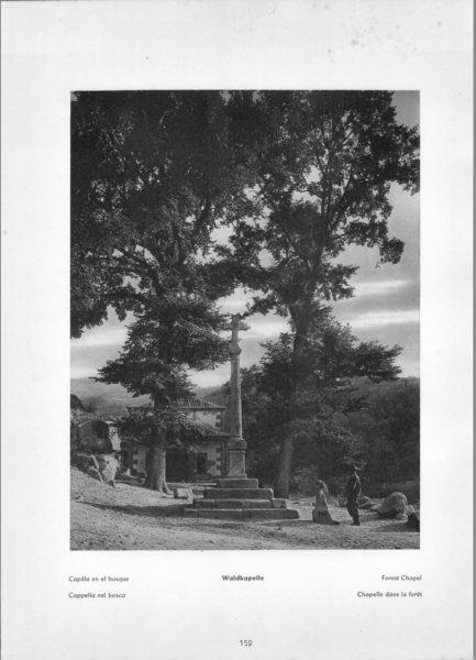 Photo 152: Toledo – Forest Chapel