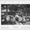 Photo 285: Vizcaya Elorrio – Sepulcros de piedra