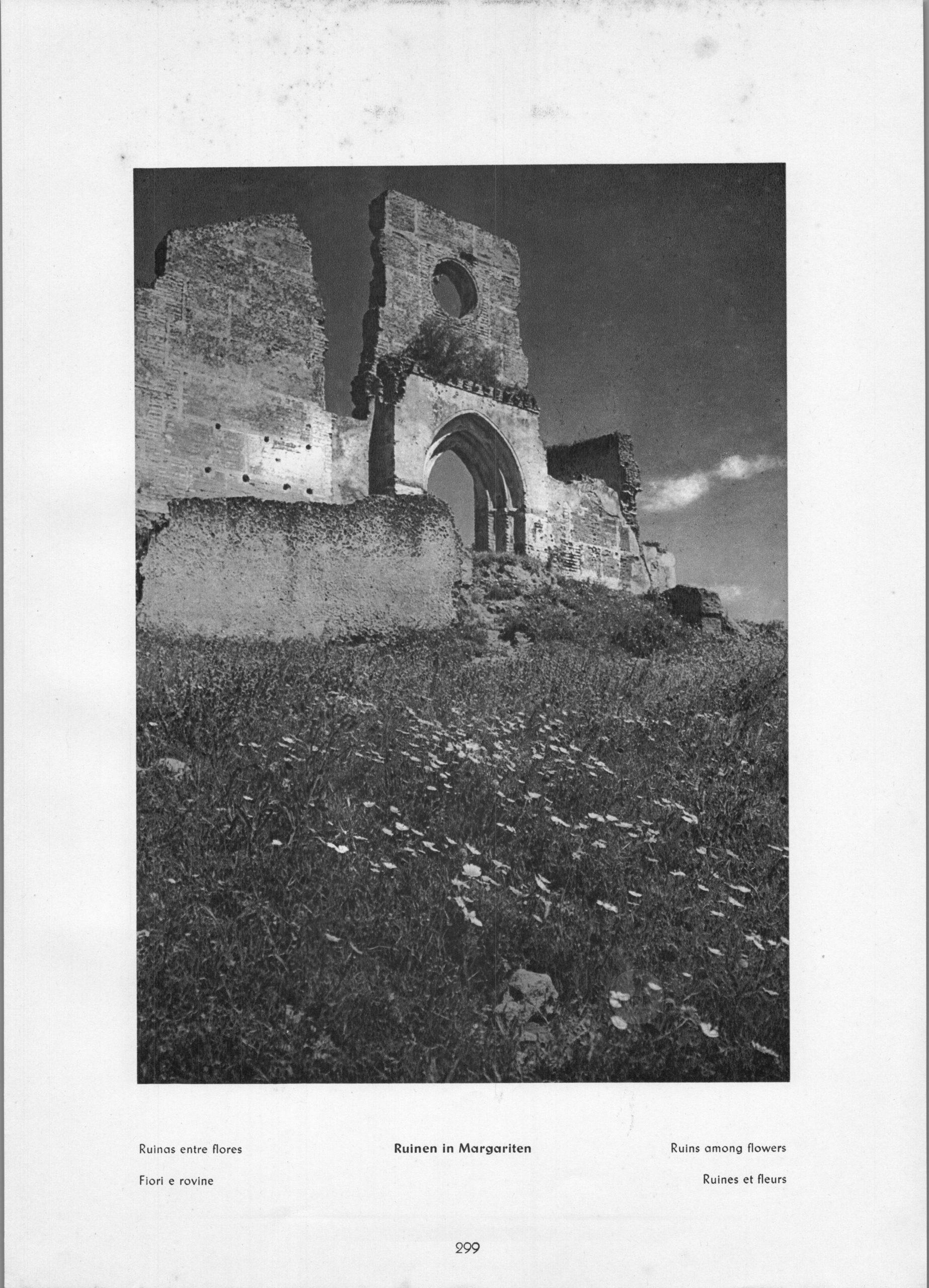 Fuenterrabia - Ruinas